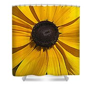 Yellow Macro Shower Curtain