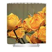 Yellow Mini Rose's Closeup Shower Curtain