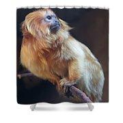 Yellow Monkey Shower Curtain