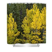 Yellow On Green Shower Curtain