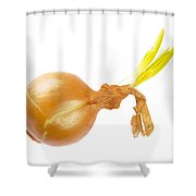 Yellow Onion With Sprout Shower Curtain