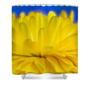 Yellow Petal Explosion Shower Curtain