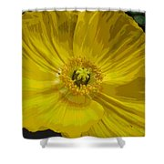 Yellow Poppy Flower Shower Curtain