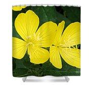 Yellow Primrose Shower Curtain