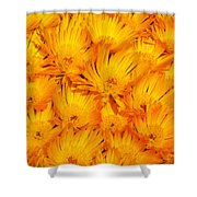 Yellow Radiance  Shower Curtain