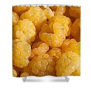 Yellow Raspberry Abstract Shower Curtain