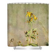 Yellow-red Wildflower With Texture Shower Curtain
