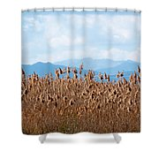 Yellow Reeds And Blue Mountains Shower Curtain