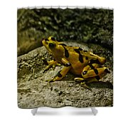 Yellow Rock Jumper Shower Curtain