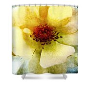 Yellow Rose Painted Shower Curtain
