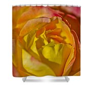Yellow Rose Up Close Shower Curtain