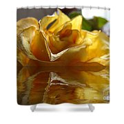 Yellow Rose Wet And Dry Shower Curtain