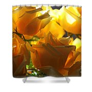 Yellow Roses And Light Shower Curtain