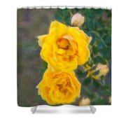 Yellow Roses On A Bush Shower Curtain