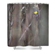 Yellow-rumpled Warbler Shower Curtain