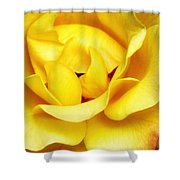 Yellow Sapphire Rose Palm Springs Shower Curtain
