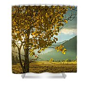 Yellow School House Shower Curtain