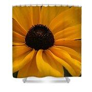 Yellow Silk Shower Curtain