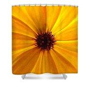 Yellow Splendour Shower Curtain