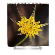Yellow Star Flower Shower Curtain