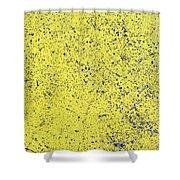 Yellow Street Shower Curtain