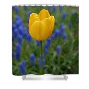 Yellow Tulip Shower Curtain