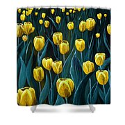 Yellow Tulip Field Shower Curtain
