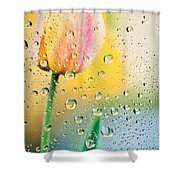 Yellow Tulip Reflecting In Water Drops Shower Curtain