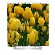 Yellow Tulip Sea Shower Curtain