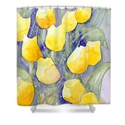 Yellow Tulips 1 Shower Curtain