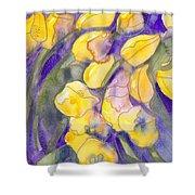 Yellow Tulips 3 Shower Curtain