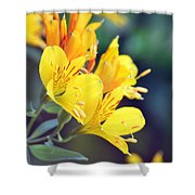 Yellow Wild Flowers Shower Curtain