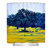 Yellow Wildflowers After Sunrise Shower Curtain