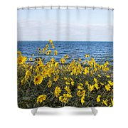 Yellow Wind Shower Curtain