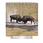 Yellowstone Turf War Shower Curtain