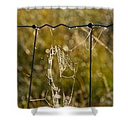 Yesterdays Web Shower Curtain