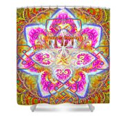 Yhwh 3 14 2014 Shower Curtain