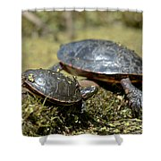 Yoga Turtles Shower Curtain
