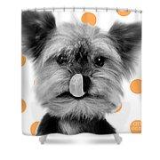 Yorkshire Terrier Dog Shower Curtain