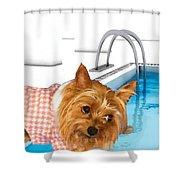 Yorkshire Terrier - This Is The Life Shower Curtain