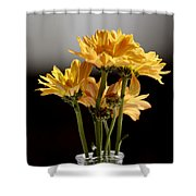 You Are The Color In My Life Shower Curtain