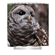 You Can Call Me Owl Shower Curtain
