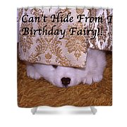 You Can't Hide Birthday Card Shower Curtain