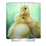 You Make Me Smile Shower Curtain
