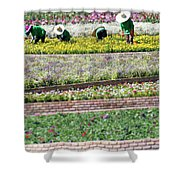 You Reap What You Sow Shower Curtain