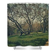 You Smiled And I Knew Shower Curtain by Laurie Search
