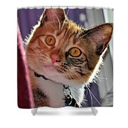 You Talking To Me? Shower Curtain
