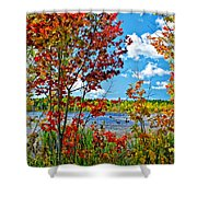 Young And Brash Shower Curtain
