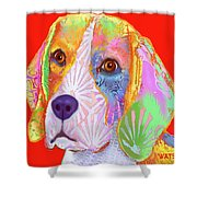 Young Beagle  Shower Curtain