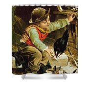 Young Boy With Birds In The Snow Shower Curtain